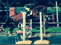 It's been a long time...sorry