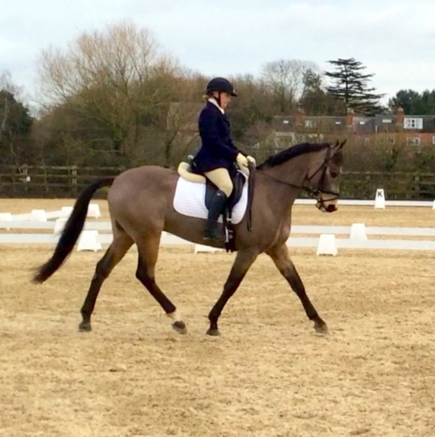 Getting Ready for the 2015 Season
